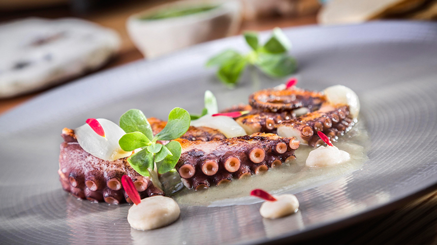 tequila food pairings: grilled octopus