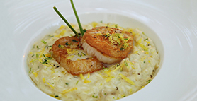 pairing_Risotto with Sea Scallops-1_thumbnail